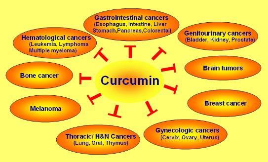 cancer Curcumin breast
